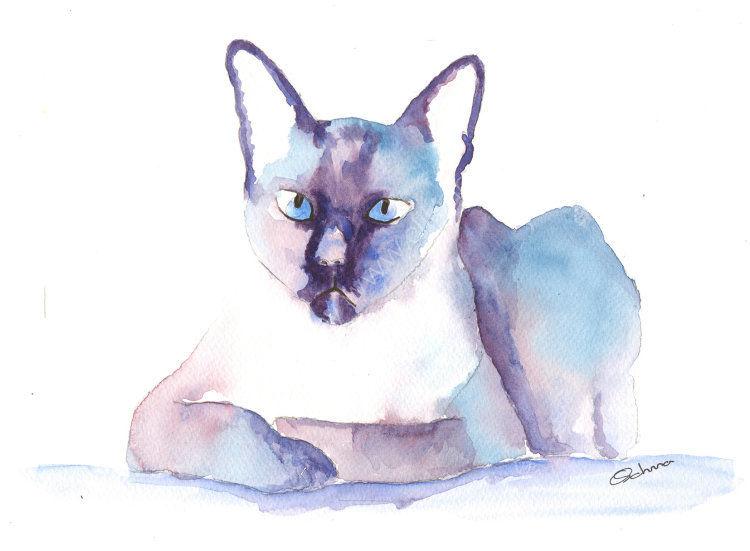 watercolour Siamese