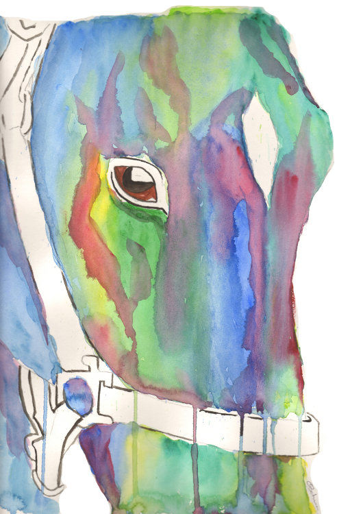 watercolour Horse face