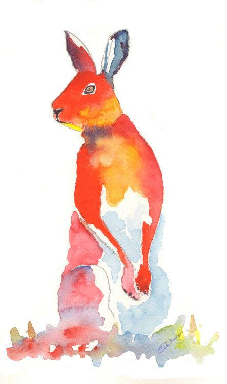watercolour orange Hare
