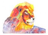 Lion on a rock print