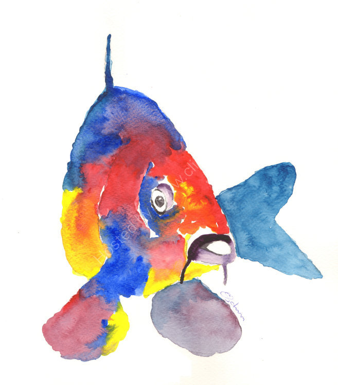 watercolour Carp