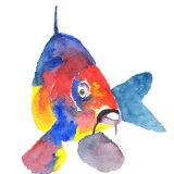 Carp is a colourful fish print