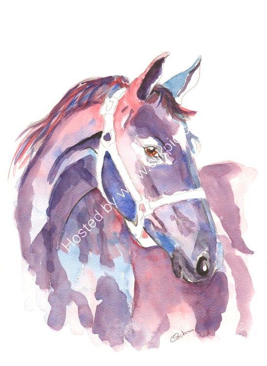 watercolour purple Horse