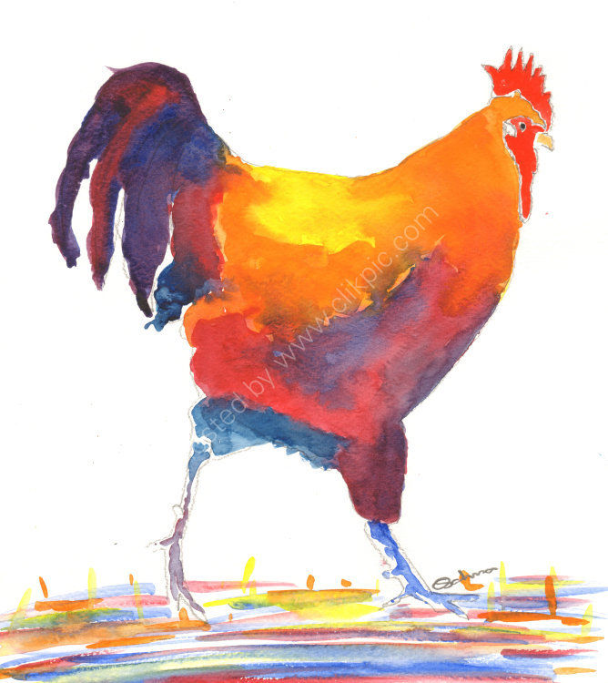 watercolour walking cockerel