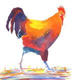 cockerel walking watercolour print