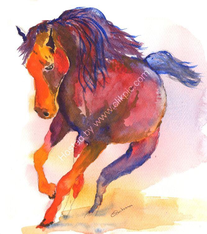 watercolour wild stallion