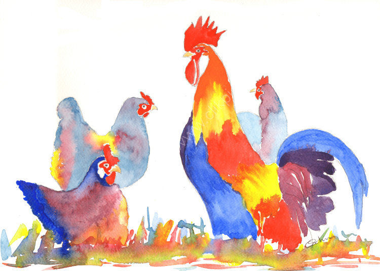 watercolour Chicken and Rooster