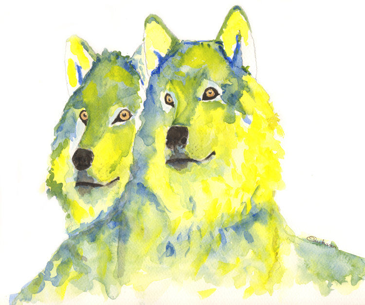 Two wolves watching
