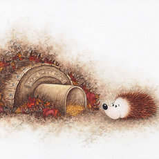 Hedgehog's Home