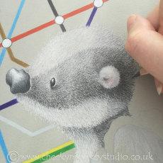 """""""Bertie"""" badger"""
