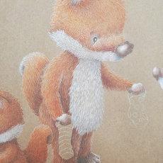 Fergus Fox
