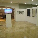 ARTery exhibition, 2016
