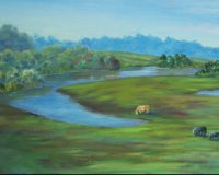 Bodalla Pastureland