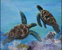 Green Turtles II