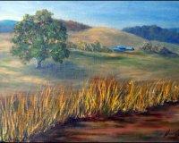 Monaro Pastureland