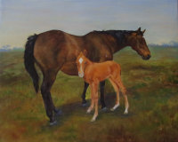 Jeannie and Foal