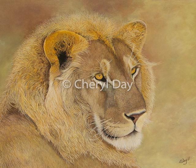 Panthera Leo Masai Mara