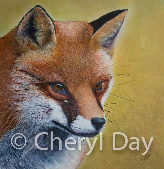 Fox Study Original Acrylic painting