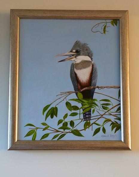 Grey ringed kingfisher