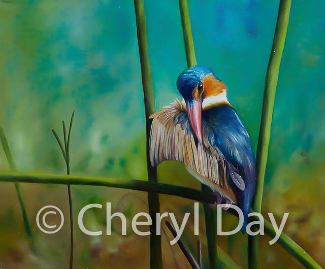 Kingfisher's Perch II in oils