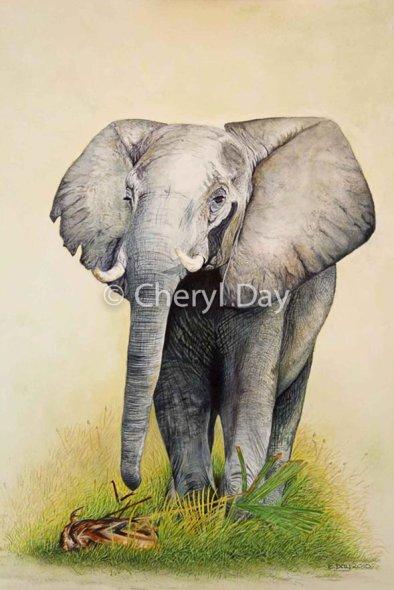Original Xugana Bull Elephant [Sold]