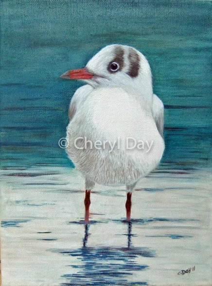 Original Oil Gull on Lakeside [Sold]