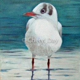 Original Oil Gull on Lakeside [Sold]