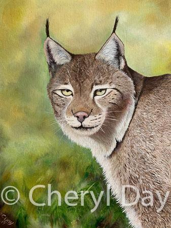 Original oil painting Eurasian Lynx