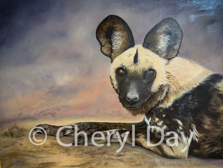 Original oil painting work in progress African Wild Hunting Dog