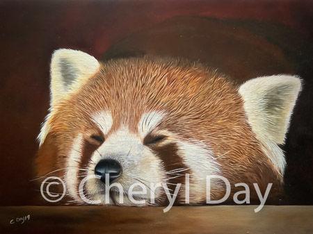 Original oil painting Sleeping Red Panda