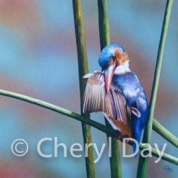 Kingfisher's Perch [Sold]