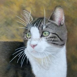 Original Neighbour's Cat in Pastel
