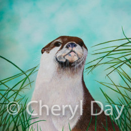Original Otter Study
