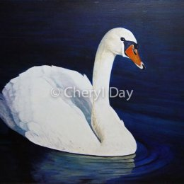 White Swan original oil painting