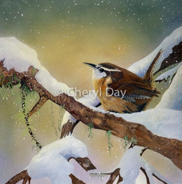 Winter Wren [Sold]