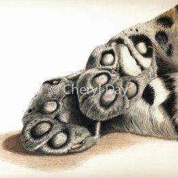Amur Leopard Downtime [sold]