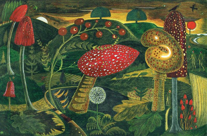 Magic Mushrooms (Aglow)