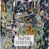 The Boundary Line - Hafod Uchtryd