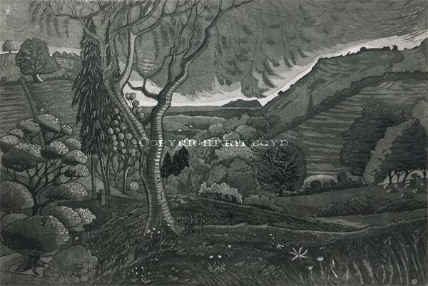 Reading Dark Mountain