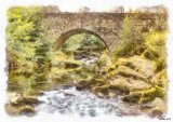Parnel Bridge Tullymore Forest