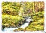 Shimna River Watercolor