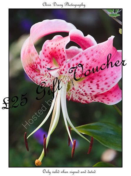£25 Gift Voucher (b).