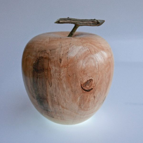 Large sycamore apple