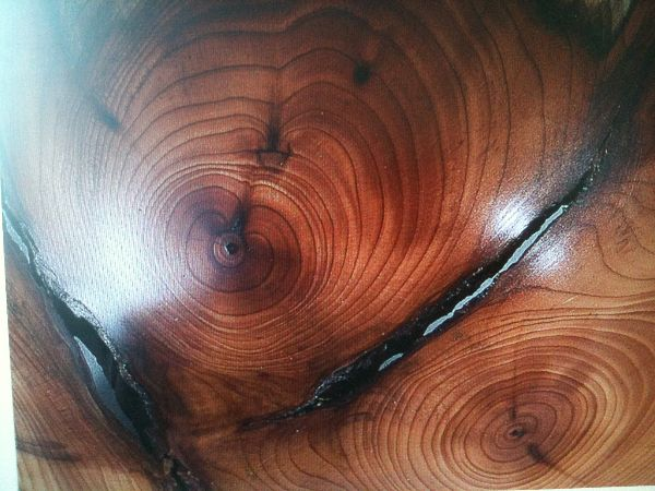 Detail of crotch yew bowl