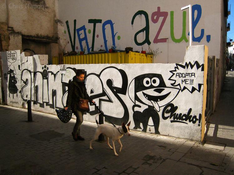 Dog walker-NR20