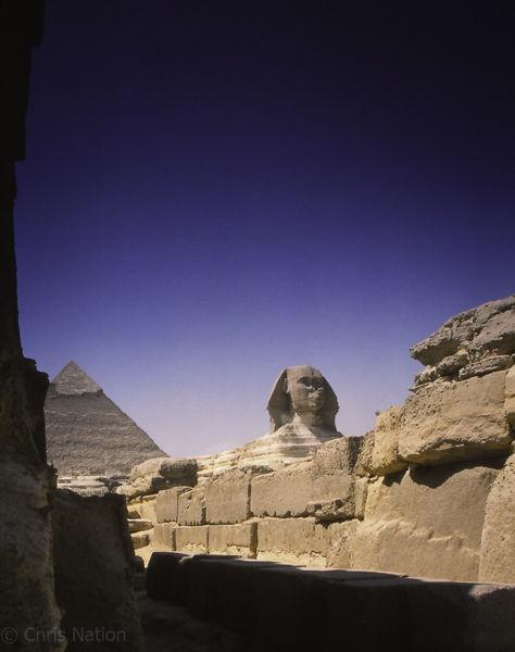 The Sphynx. Giza. Egypt