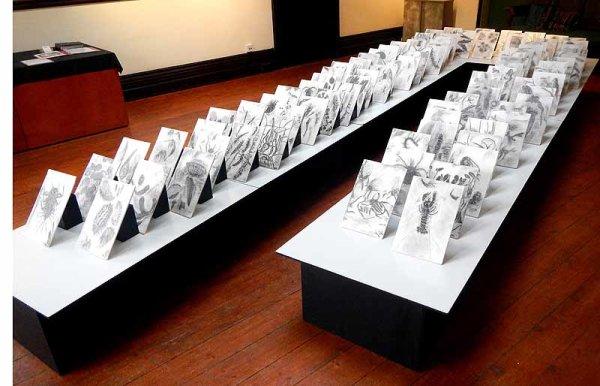 <b> installation at Brantwood</b>