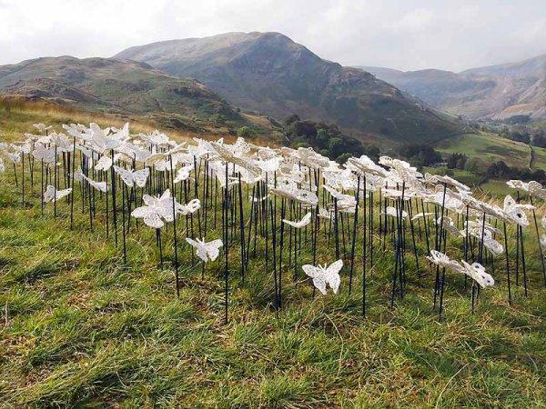 <b> hundreds of butterflies, rare and fragile</b>
