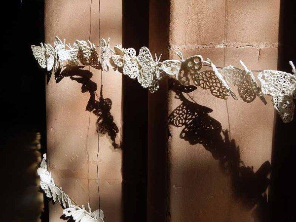 <b>detail butterflies</b>