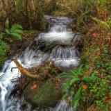 Glen Coe little waterfall